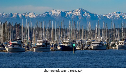 Marina at Olympia, Washington with Olympic Mountains in background