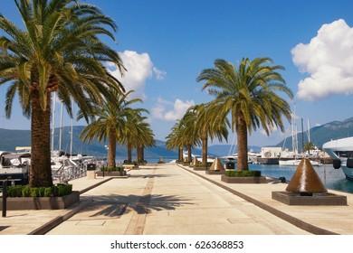 Marina Porto Montenegro. Tivat, Montenegro