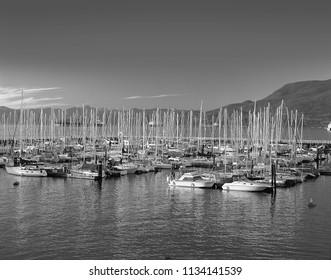 Marina with sails and boats