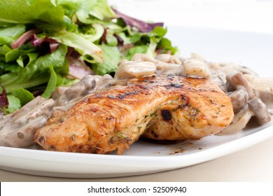 Marinated chicken with white wine mushroom sauce and green salad