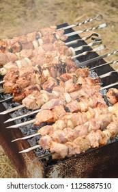 Marinated shashlik, barbecue