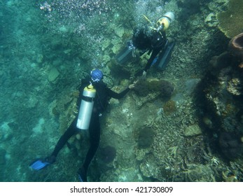 Marine biologist checking coral reef.
