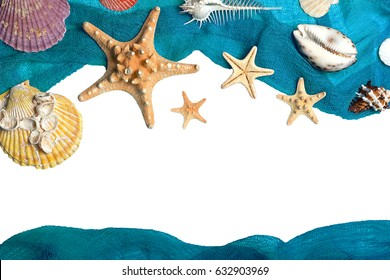 Marine blue background with seashells and starfish in fishing nets, isolated on white with place for your text