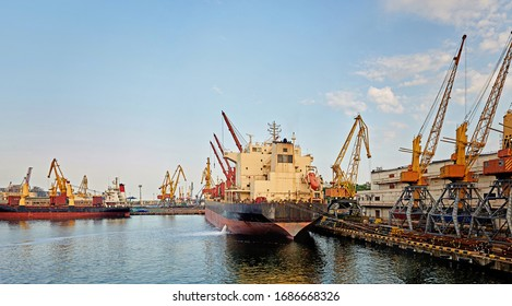 Marine Industrial Commercial Port. Industrial zone in sea port. Container cranes. Cargo terminal of sea freight industrial port.