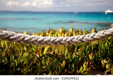 Marine landscape with a rope and bushes in the foreground