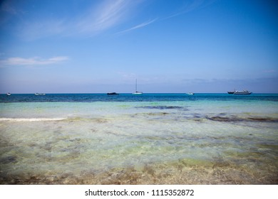 Marine landscape with sailboats on the background