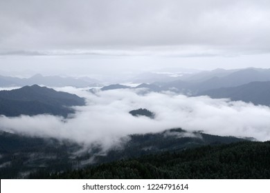 Marine layer over Lookout Creek and Blue River drainage, from Carpenter Mountain fire lookout, H.J. Andrews Experimental Forest, Willamette National Forest, Oregon, USA