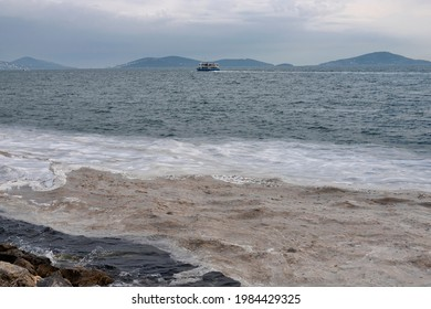 Marine mucilage, sometimes referred to as sea snot due to its viscous texture in Istanbul remains a dire threat for the Marmara Sea. TURKEY - Shutterstock ID 1984429325