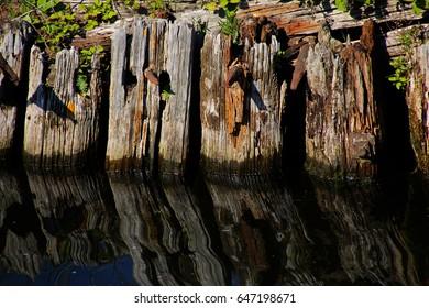 Marine pilings