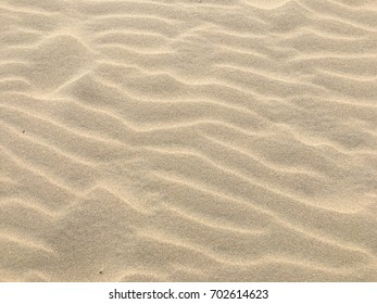 Marine sand with wavy surface