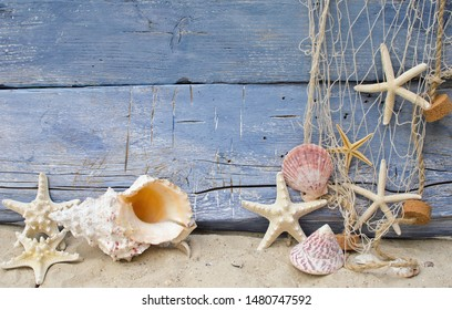 Maritime souvenir from holidays on the beach: Seashell background border on rustic blue wood. Top view on different starships with white sand and fishnet.