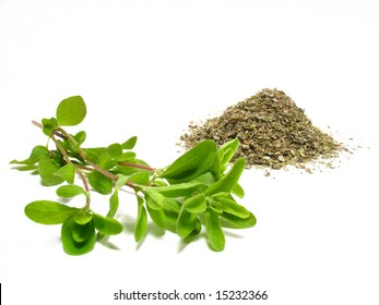 Marjoram, detail fresh marjoram and dry-up herb