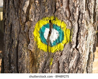 mark on tree to be cut