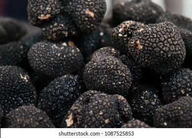 market basket of a black truffle and make sure it is good and that it is of excellent quality