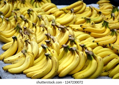 A market stall sells lots of bananas when the fruit is in season