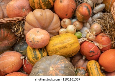 Market stall with variety of pumpkins