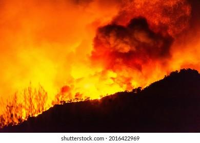 Marmaris, Mugla, Turkey – July 29, 2021. Flames of forest fire near Marmaris resort town of Turkey, at night