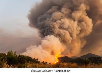 Marmaris, Mugla, Turkey – July 29, 2021. Forest fire near Marmaris resort town of Turkey