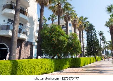 Marmaris, Turkey - 06.24.2018: Promenade of Marmaris, palm trees and hotels on it