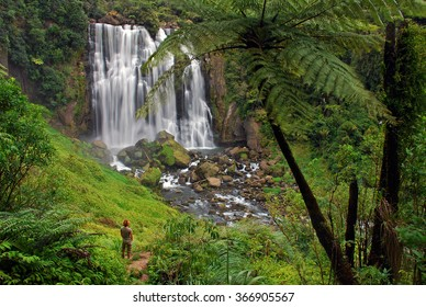 Marokopa Falls in the Waikato region, Northland, North Island, New Zealand