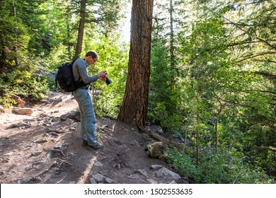 Maroon Bells crater lake hike trail in Aspen, Colorado with forest footpath and man taking picture of porcupine wildlife wild animal