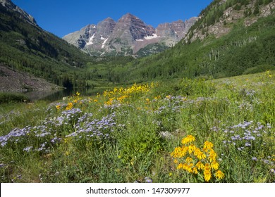 Maroon Bells near Aspen in the Colorado Rocky Mountains - wildflowers near Maroon Lake.