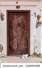 MARRAKECH, MOROCCO - APRIL 12, 2017: Cats sleeping in front of a door in the Medina of Marrakech, Morocco