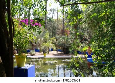 Marrakech, Morocco - March 13, 2020: Amazing tropical garden in Le Jardin Majorelle. Marrakech, Morocco.
