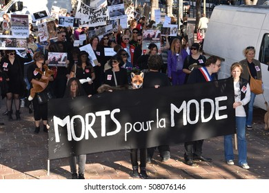 Marseille, France - October 29, 2016 : A group of animal rights activists, carrying faux animals and various banners gather to protest against the consuming of animal fur clothing
