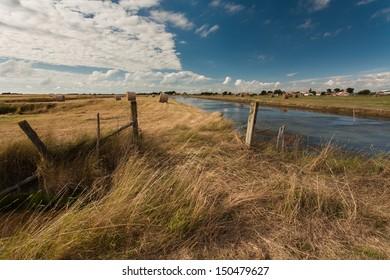 Marsh of Beauvoir-sur-mer in Vendee, France