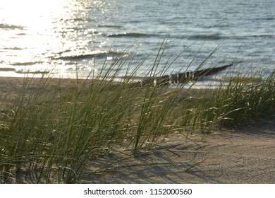 Marsh grass and wooden stages on the North Sea beach  at sunset