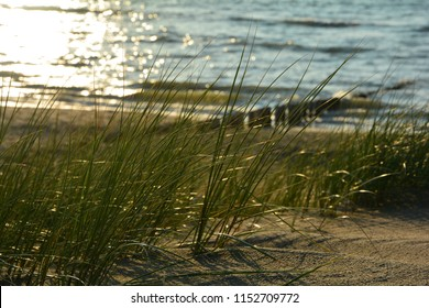 Marsh grass and wooden stages on the beach on the  North Sea at sunset