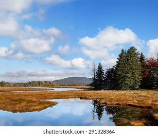 Marsh Land Surrounding The Marshall Brook, A Winding Waterway, Also Called Bass Harbor Marsh At Acadia National Park, Maine, USA