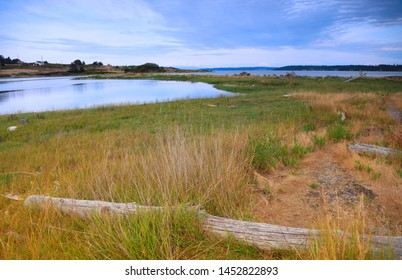Marsh lands in Whidbey island in washington state