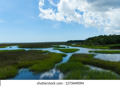 Marshes in Florida