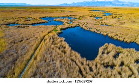 Marshes and Reeds wetland from top view aerial drone photo shoot. This is Sultan Sazligi national park in Develi Valley Kayseri Turkey. Beautiful pastoral landscape