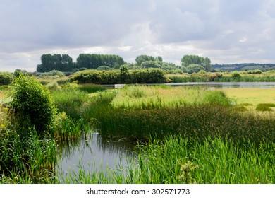 Marshes, Rutland UK