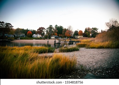 The marshland grasses and the sandy bank is in front and houses and colorful trees by the water in the back with warm yellow colors in Branford point, Connecticut.