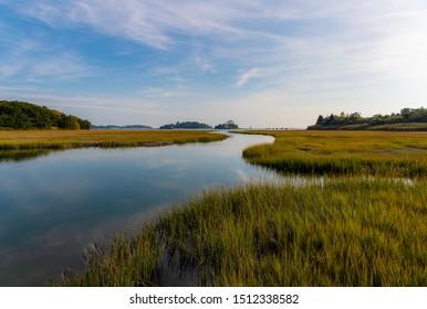 Marshland on the Long Island Coast of Connecticut