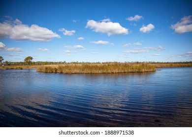 Marshland of Shelby Lakes at Gulf State Park