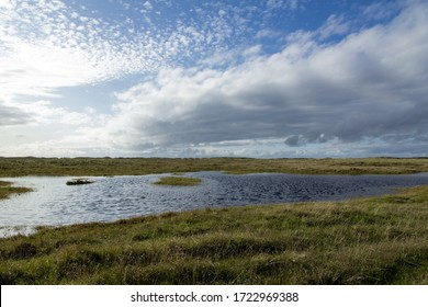 Marshland with water areas and grasslands
