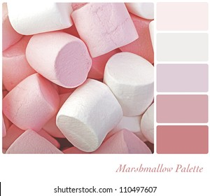 Marshmallow background colour palette with complimentary swatches.