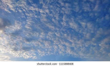 Marshmallow clouds under a blue sky