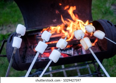 Marshmallow on metal skewer roasted on fire. Food photography