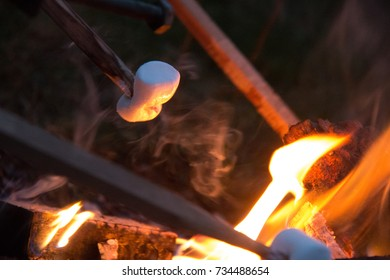 Marshmallows grilling at the campfire at evening with classical sticks and the orange flames