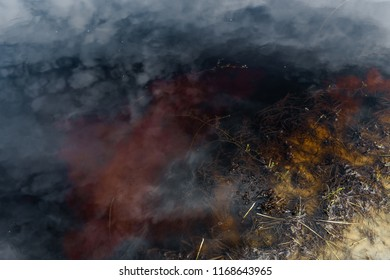 marshy metnost, boiling water of different colors
