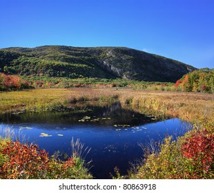 A Marshy Pond And Mountain Under Deep Blue Skies During Autumn At Acadia National Park, Maine, USA