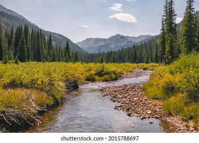 Marten Creek in the Hunter-Fryingpan Wilderness, Colorado