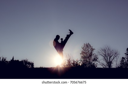 Martial Artists Silhouette - Axe Kick