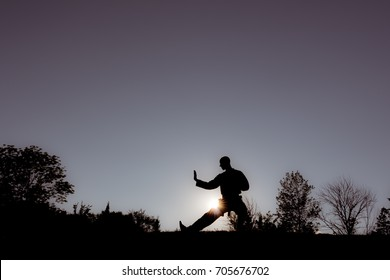 Martial Artists Silhouette - Defensive Posture